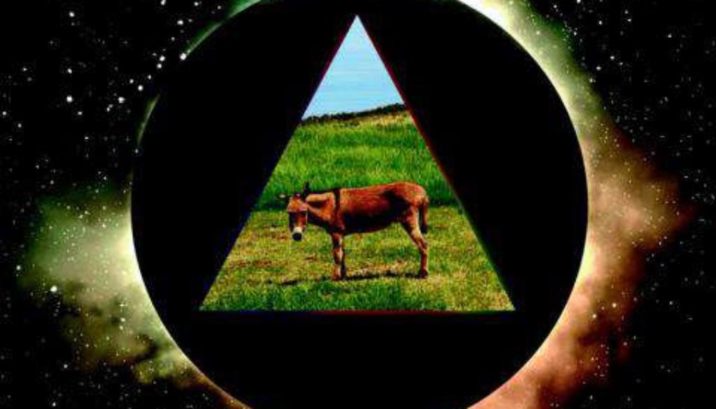 Gov't Mule - Dark Side Of The Mule