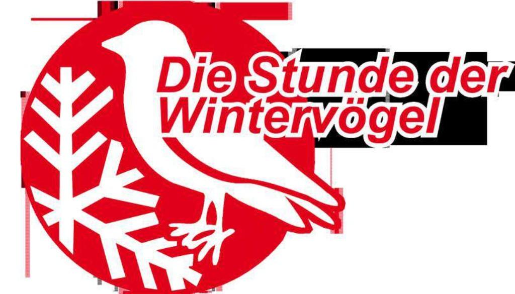 OXMOX, Hamburg Ticker, Stunde der Wintervögel