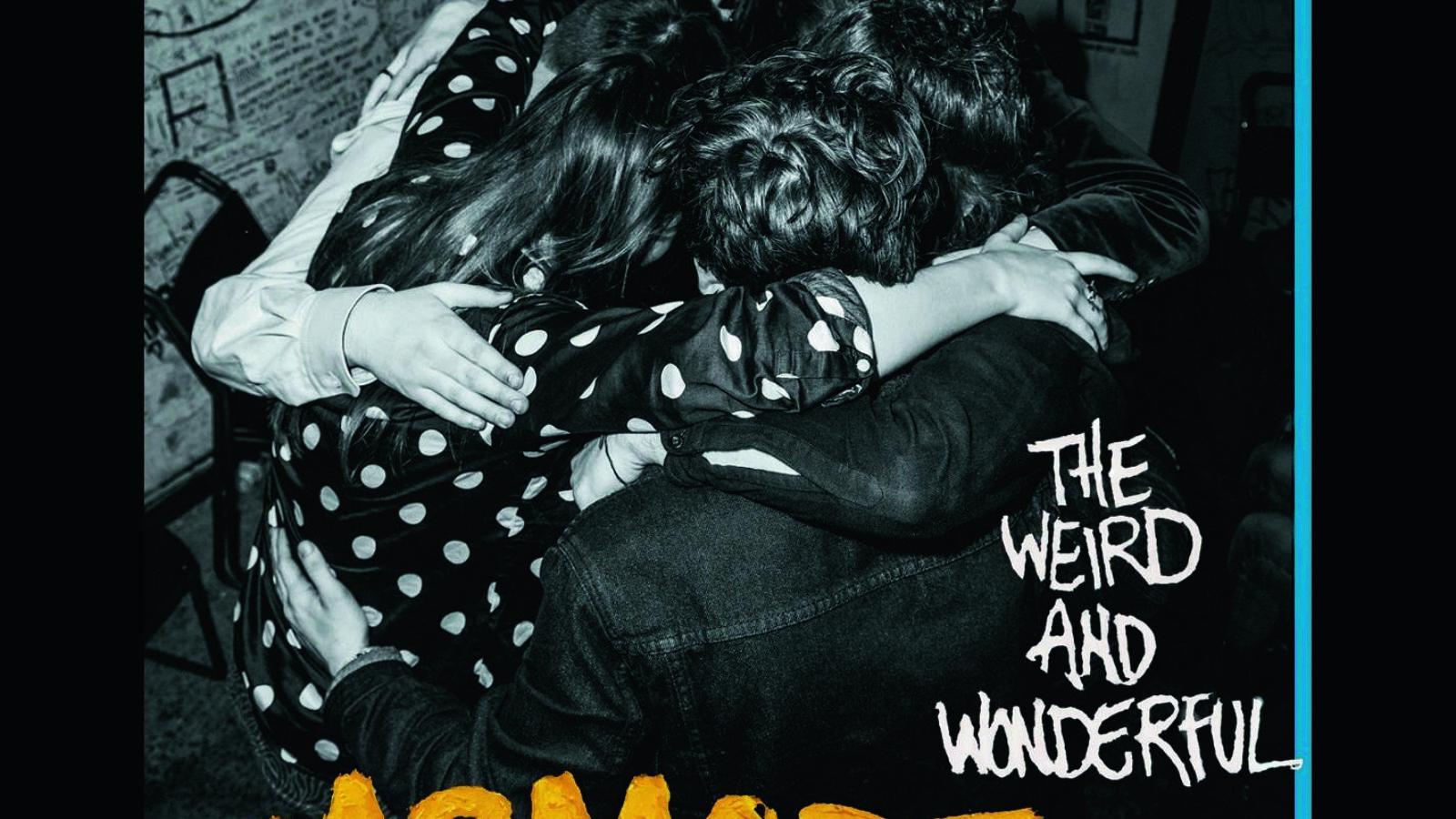 MARMOZETS The Weird And Wonderful Marmozets