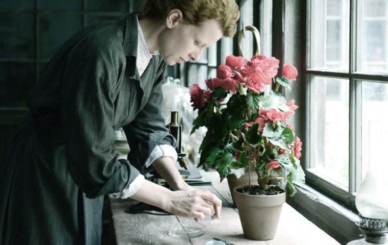 OXMOX Film-Tipp: Marie Curie