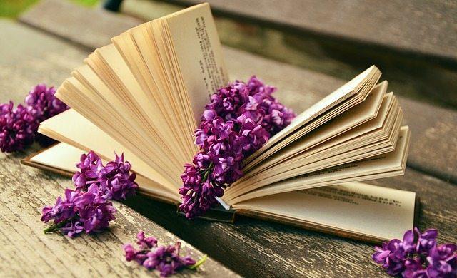 Top 10 Bücher für den Lesefrühling