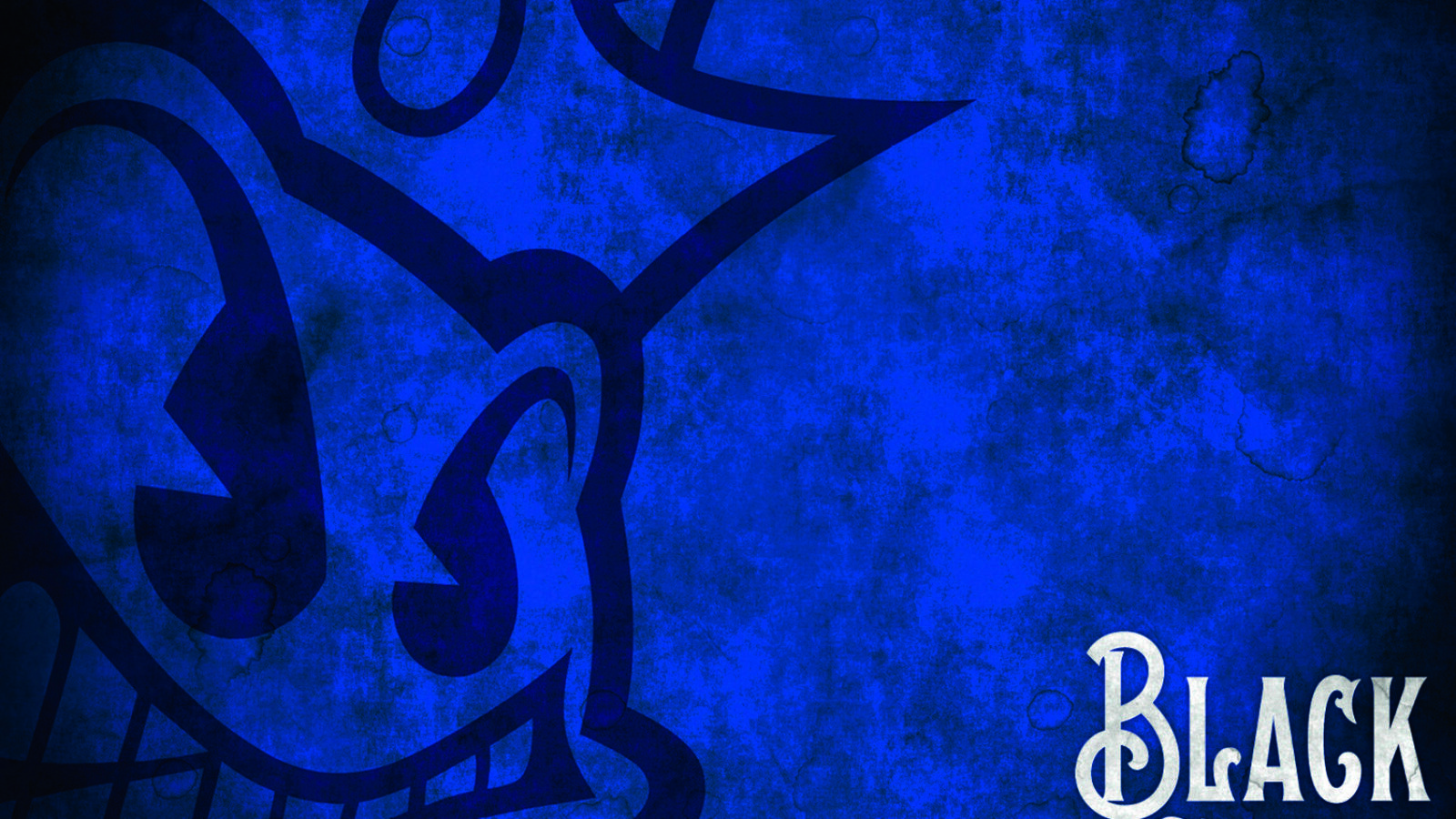 Platten des Monats: Black Stone Cherry Black To Blues