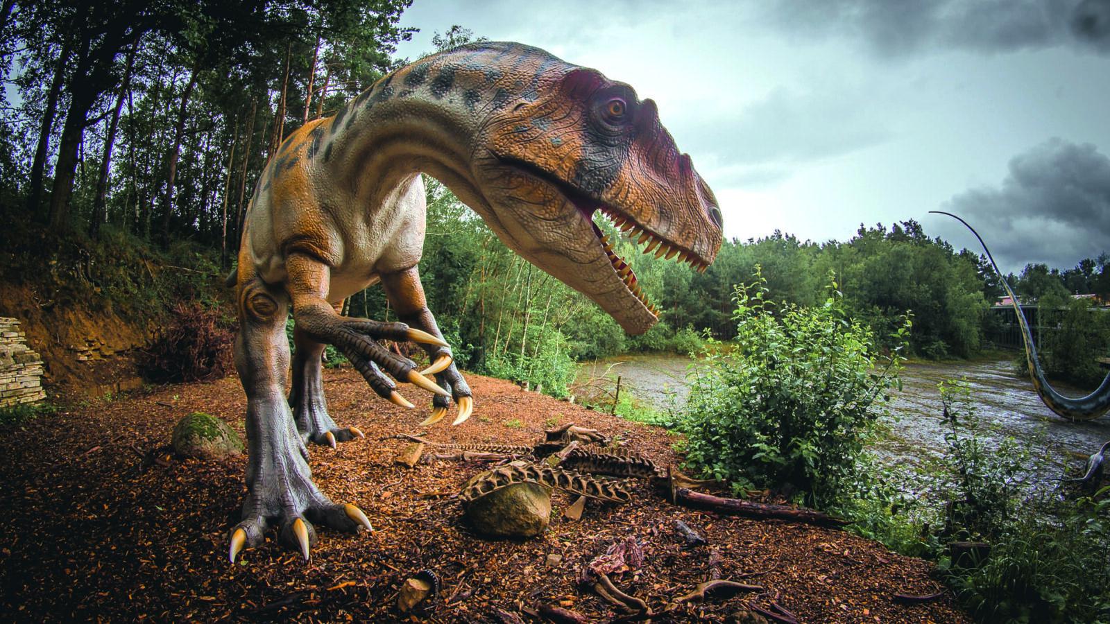 Im Reich der Urzeit-Giganten …