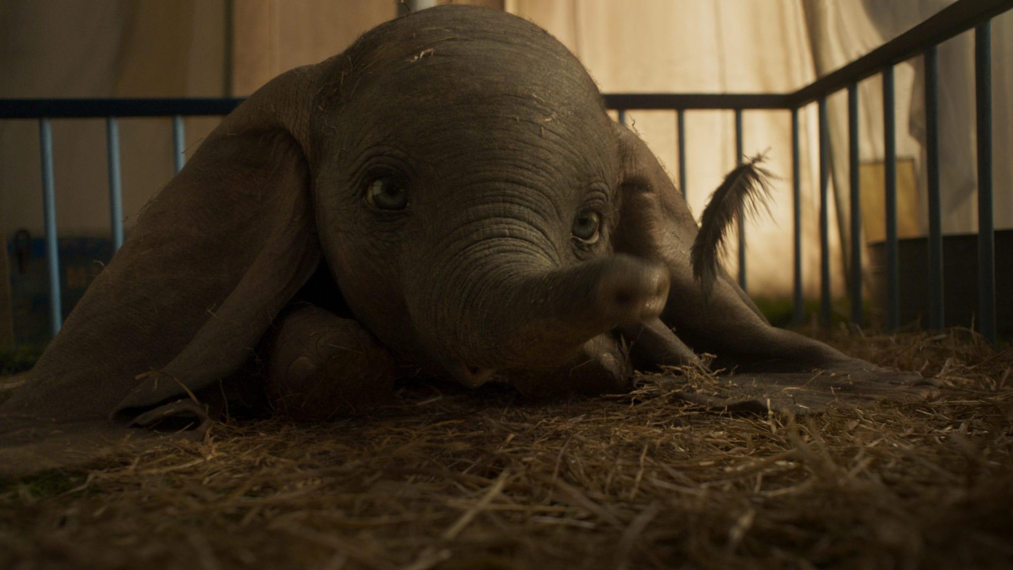 Dumbo - KINOFILME AB 28.03.2019