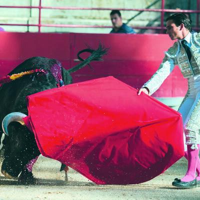 bullfight-2012796_1920