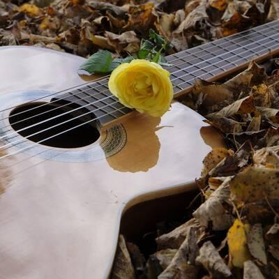 guitar-2806928_1920