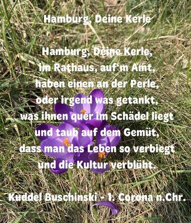 Hamburger Perlen 386x450 - Leserbriefe: OXMOX-Pärchen & Poeten